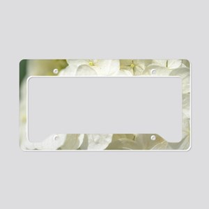 Hydrangeas in the Sun License Plate Holder