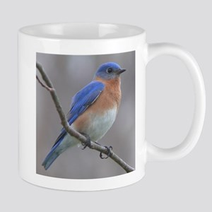 Eastern Bluebird Mugs