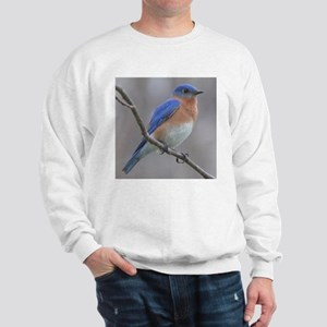 Eastern Bluebird Sweatshirt