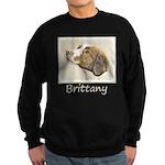 Brittany Sweatshirt (dark)