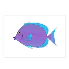 Blue tang Surgeonfish Postcards (Package of 8)