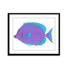 Blue tang Surgeonfish Framed Panel Print