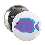 Blue tang Surgeonfish 2.25