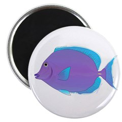 Blue tang Surgeonfish Magnets