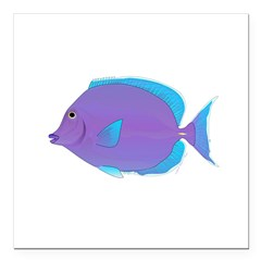 Blue tang Surgeonfish Square Car Magnet 3