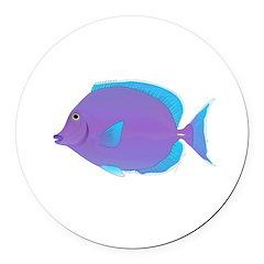 Blue tang Surgeonfish Round Car Magnet
