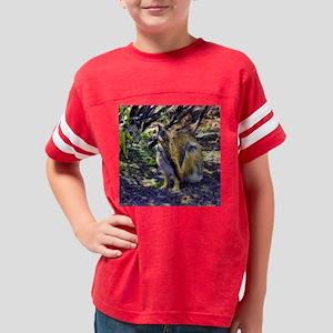 desert cottontail Youth Football Shirt