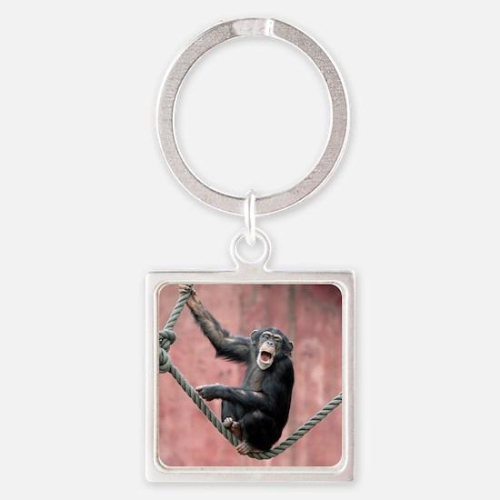 Chimpanzee001 Square Keychain