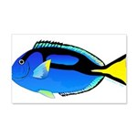 Palette Surgeonfish Regal Tang Wall Decal