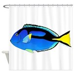 Palette Surgeonfish Regal Tang Shower Curtain