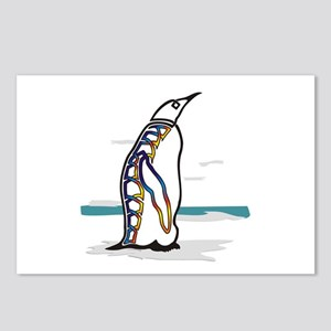 Colorful Penguin Postcards (Package of 8)