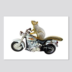 Motorcycle Squirrel Postcards (Package of 8)
