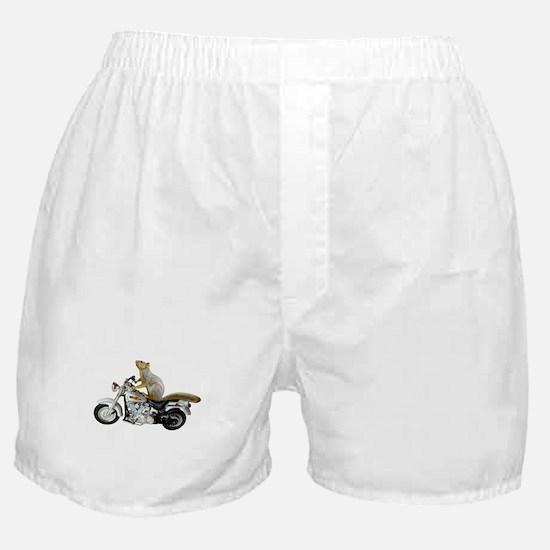 Motorcycle Squirrel Boxer Shorts