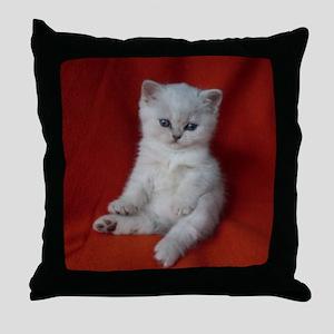 British Shorthair kitten Throw Pillow