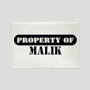 Property of Malik Rectangle Magnet