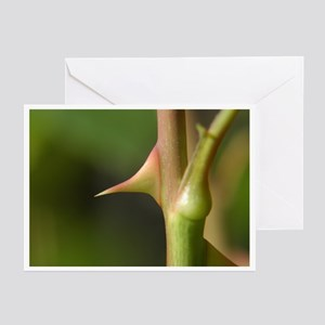 Extra Sharp Note Cards (Pk of 10)
