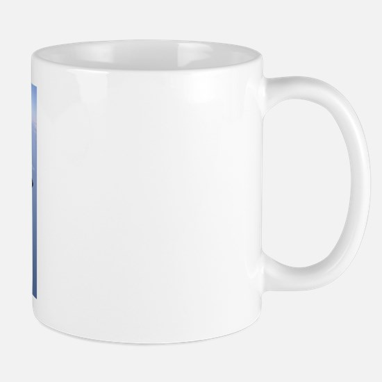 AAAAA-LJB-231-ABC Mugs