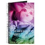 Bigger World Journal