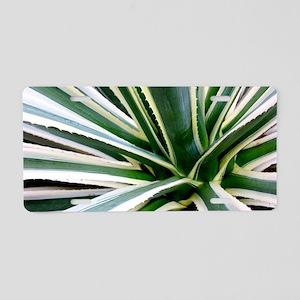 Yucca Plant Aluminum License Plate