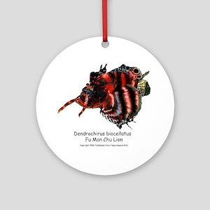 Fu Man Chu Lion Ornament (Round)