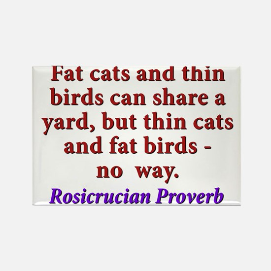 Fat Cats And Thin Birds Rectangle Magnet