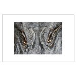 Crocodile Eyes Large Poster