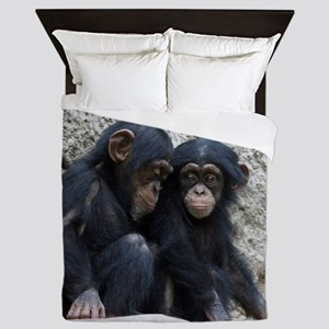 Chimpanzee002 Queen Duvet