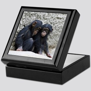 Chimpanzee002 Keepsake Box