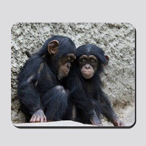 Chimpanzee002 Mousepad