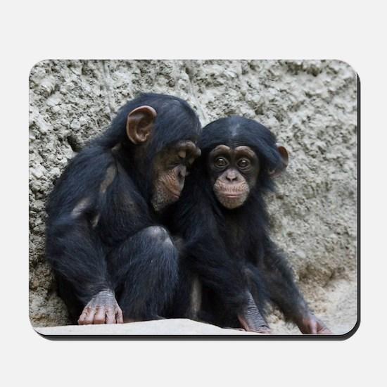 Chimpanzee002 Mousepad
