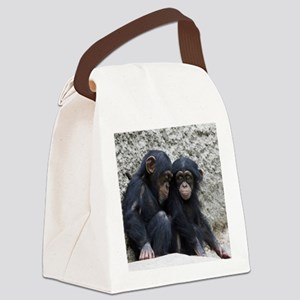 Chimpanzee002 Canvas Lunch Bag