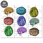 C Brain Puzzle