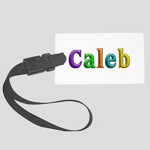 Caleb Shiny Colors Large Luggage Tag