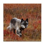 Alpha Male Wolf Tile Coaster