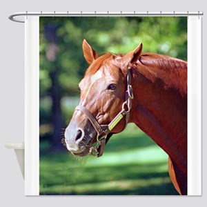 SECRETARIAT Shower Curtain