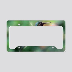Humming Bird ** License Plate Holder