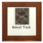 Bobcat Track Photo Framed Tile