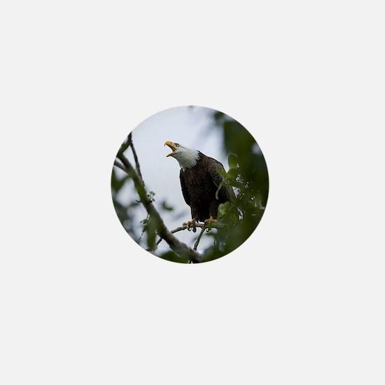Bald Eagle Mini Button