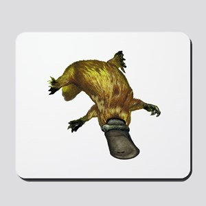 PLAY NATURED Mousepad