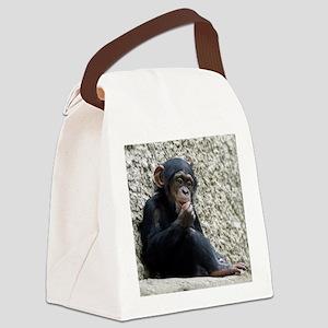 Chimpanzee003 Canvas Lunch Bag