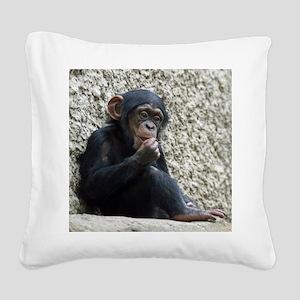 Chimpanzee003 Square Canvas Pillow