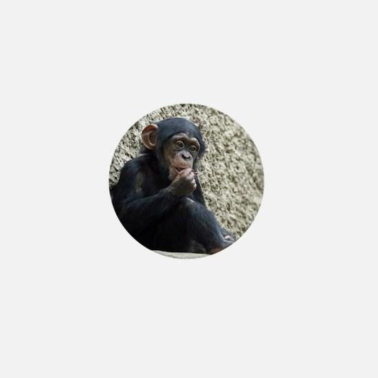 Chimpanzee003 Mini Button
