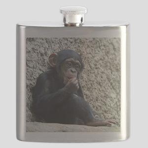 Chimpanzee003 Flask