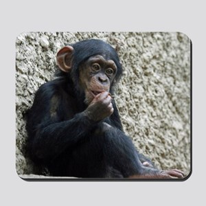Chimpanzee003 Mousepad