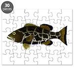 Black Grouper Puzzle