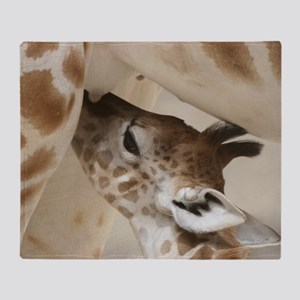 Giraffe003 Throw Blanket