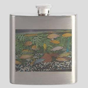 Cichlid Tank Flask