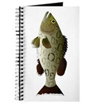 Gag Grouper Journal