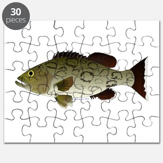 Gag Grouper Puzzle