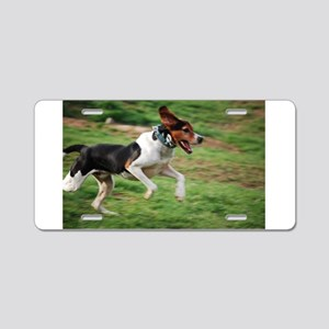 treeing walker coonhound running second Aluminum L